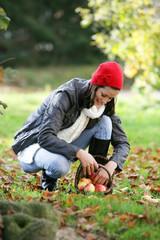 L-Automne Pomme