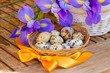 eggs and irises for easter