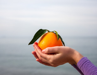 Orange in palm of hand