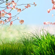 Frühling, Frohe Ostern, Hintergrund
