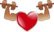 Sportler Herz