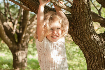 little girl playing round the tree