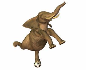 éléphant sur un ballon