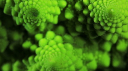 Romanesco broccoli cabbage marco. Slow focus effect.