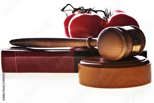 Food law image with gavel, book and food.