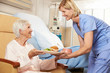 Nurse Serving Meal To Senior Female Patient Sitting In Chair