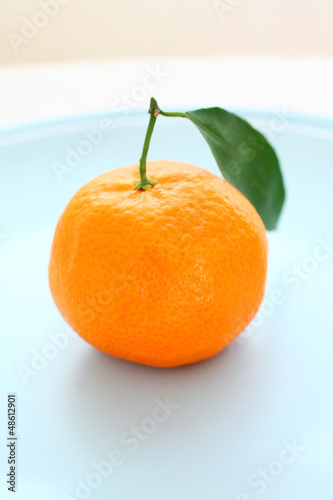 Ripe clementines on the blue, pastel plate
