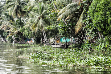 House boat in backwaters near palms in Alappuzha, Kerala, India