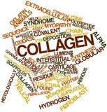 Word cloud for Collagen poster