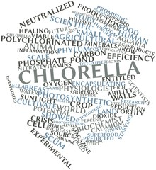 Word cloud for Chlorella