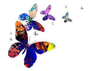 butterfly art 2