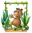 A brown beaver