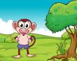 A monkey standing