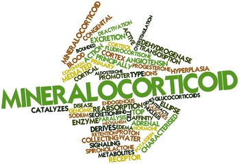 Word cloud for Mineralocorticoid
