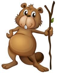 A beaver holding a stem