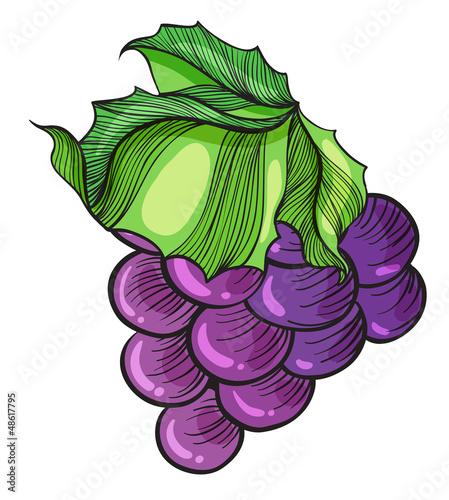 A luscious grape