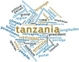 Word cloud for Tanzania