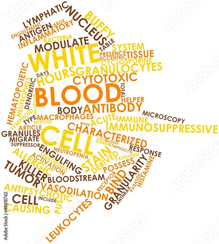 Word cloud for White blood cell