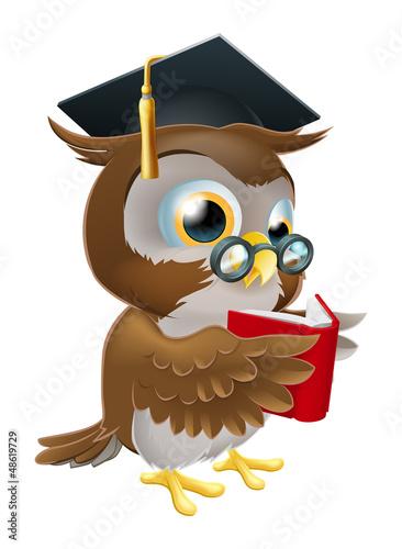 Owl reading book