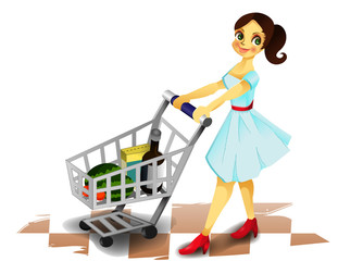 Lady with shopping cart