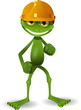 Frog in a helmet