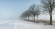 Icy rural road with snow and low visibility