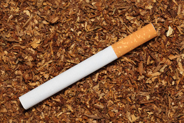 Cigarette on scattered tobacco background
