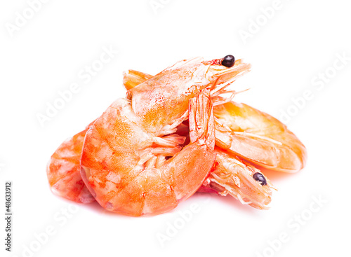 Royal shrimps