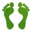 green herbal human footprints