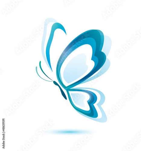 blue butterfly, beauty concept