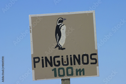 Penguin warning