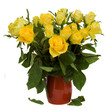 bouquet of yellow roses in pot