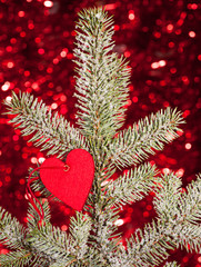 heart on christmas fir tree branch