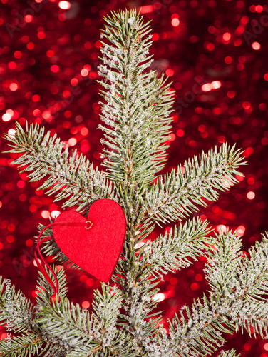 heart on christmas fir tree branch