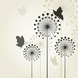 Three dandelions2 - 48654332