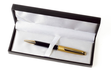 case on the white background