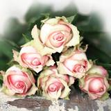 Rosenstrauß rosa