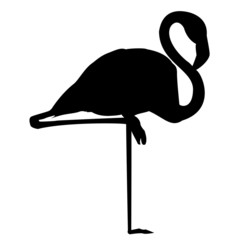 Flamingo Silhouette Vektor