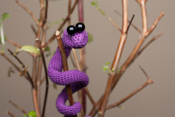 Фиолетовая змея
