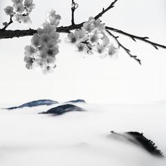 BW Cherry blossoms