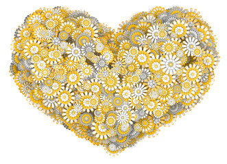 Heart from camomile flowers