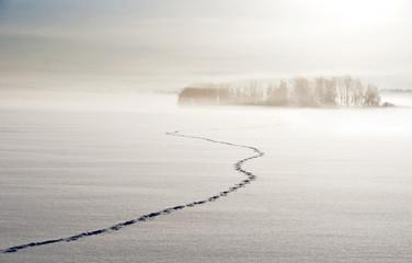 Foootsteps on lake in winter