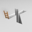 letter x and ladder