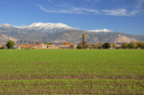 Mt. San Jacinto and farmland