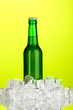 Beer bottle in ice on green background