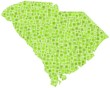 Map of South Carolina - USA - in a mosaic of green squares