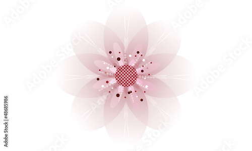 zarte rosa Kirschblüte