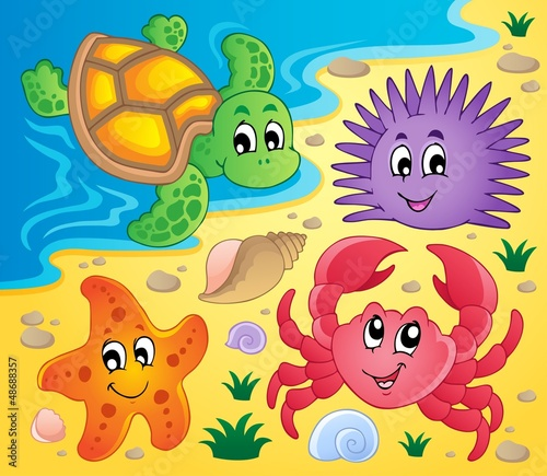 Beach with shells and sea animals 3