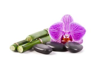 flores piedras y bambú