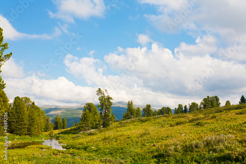 Beautiful summer landscape. Altai. Russia
